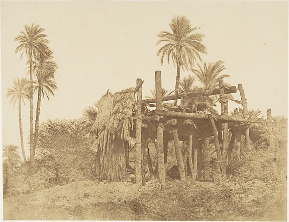 Nubian Sakkieh, or Water Wheel, Attributed to Robert Murray (British, Edinburgh 1822–1893 Plymouth), Albumen silver print