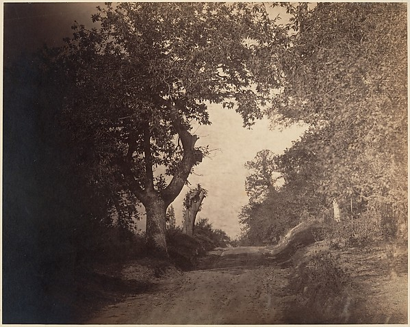 Fontainebleau, chemin sablonneux montant, Gustave Le Gray (French, 1820–1884), Albumen silver print from glass negative