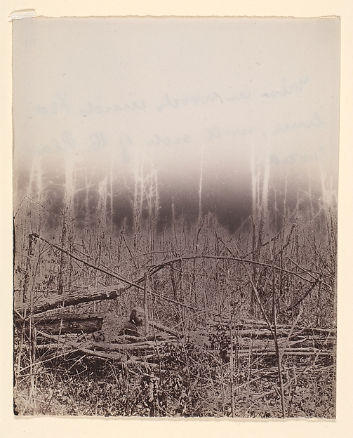 The Wilderness Battlefield, Unknown (American), Albumen silver print from glass negative