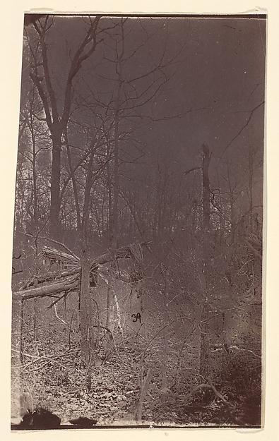 The Wilderness Battlefield, Unknown (American), Albumen silver print from glass negative