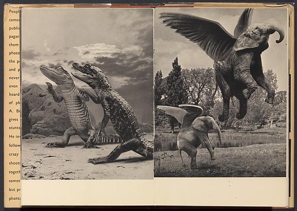 Crazy Camera: Secrets of Photomontage, Claude A. Bromley