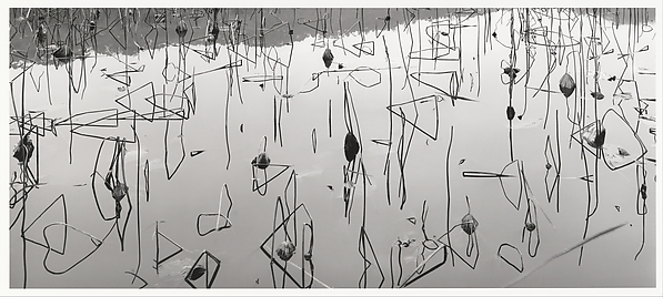 Xi Hu, Hangzhou, Zhejiang, China, Lois Conner (American, born New York, 1951), Inkjet print