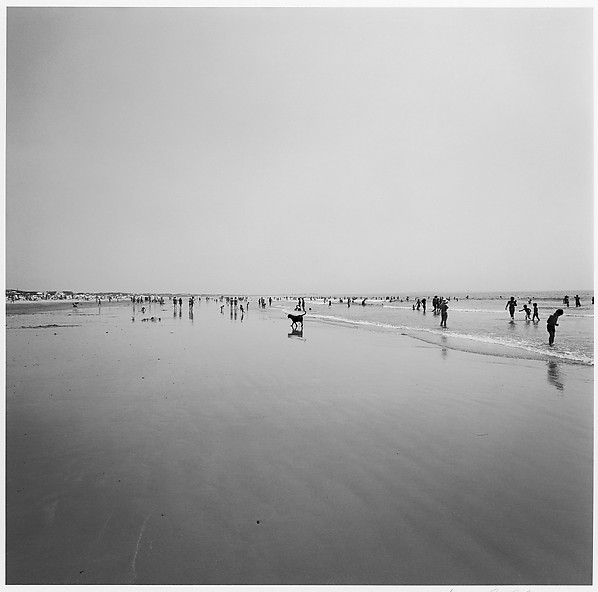 Cape Cod, Harry Callahan (American, Detroit, Michigan 1912–1999 Atlanta, Georgia), Gelatin silver print
