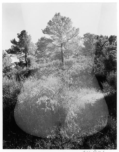 Eleanor, Aix-en-Provence, Harry Callahan (American, Detroit, Michigan 1912–1999 Atlanta, Georgia), Gelatin silver print