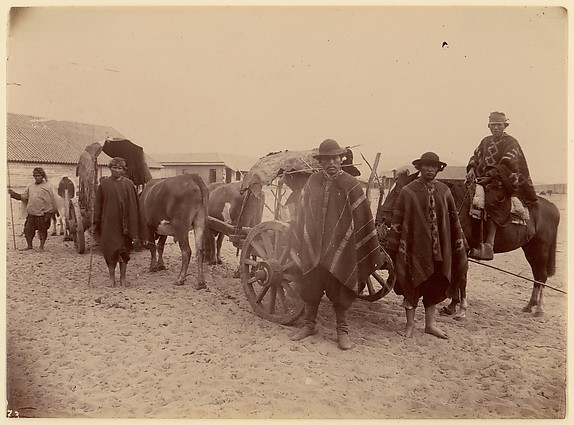 [Group of Indians with Cart and Oxen], Unknown, Albumen silver print