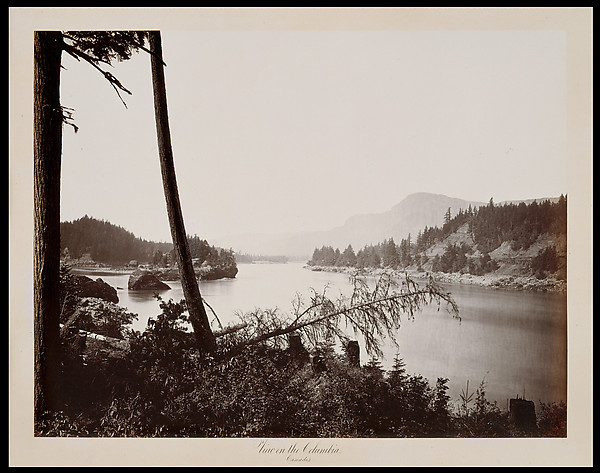 View on the Columbia, Cascades, Carleton E. Watkins (American, 1829–1916), Albumen silver print from glass negative