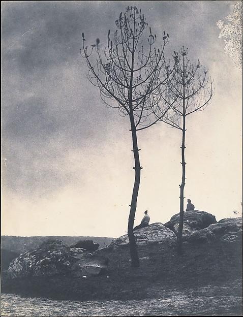 Près de la Caverne, Terrain Brûlé, Eugène Cuvelier (French, 1837–1900), Salted paper print from paper negative
