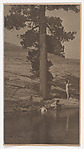 The Pool, Anne W. Brigman (American, Honolulu, Hawaii 1869–1950 Eagle Rock, California), Gelatin silver print