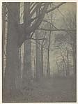 The November Woods, Little Falls, New York, Unknown (British), Gelatin silver print