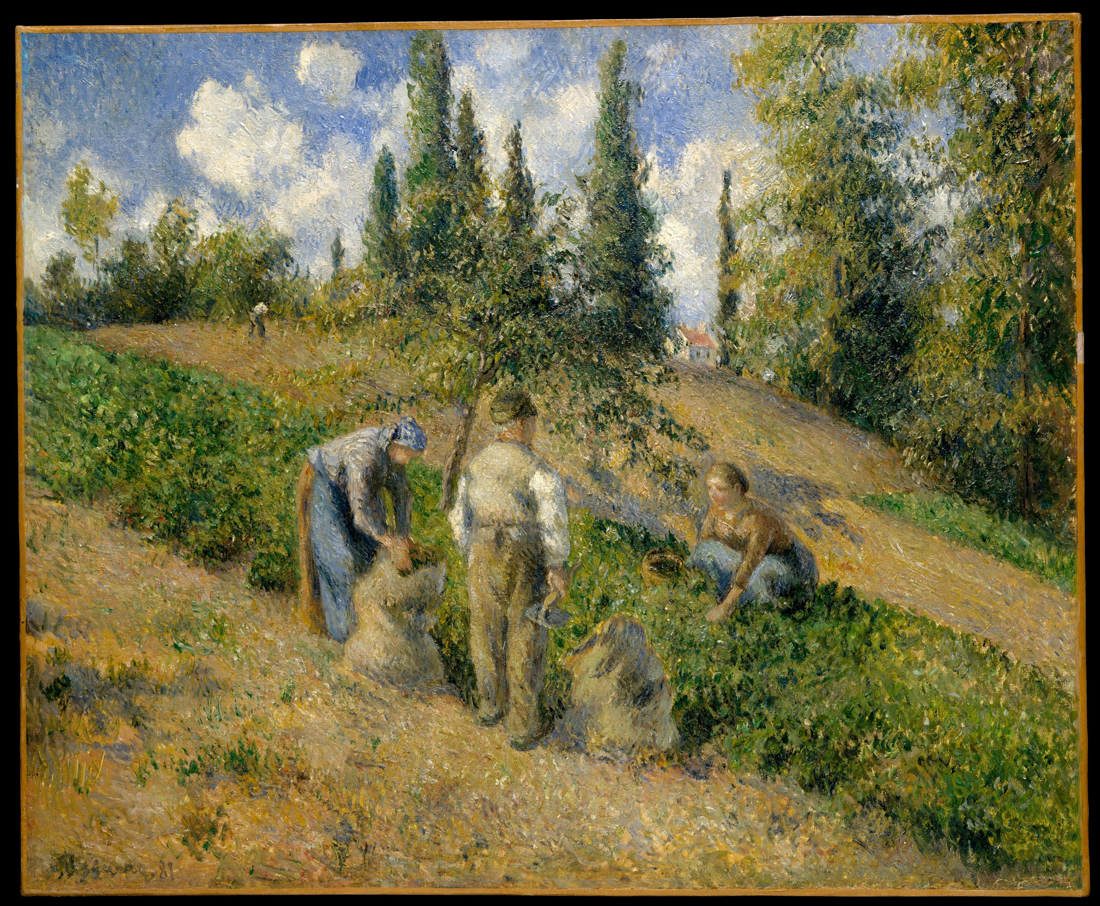 The Harvest, Pontoise (La Récolte, Pontoise), Camille Pissarro (French, Charlotte Amalie, Saint Thomas 1830–1903 Paris), Oil on canvas