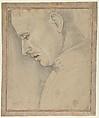 Head of a Man in Profile, Luca Signorelli (Luca d'Egidio di Luca di Ventura) (Italian, Cortona, active by 1470–died 1523 Cortona), Black chalk, pen and brown ink, heightened with white.