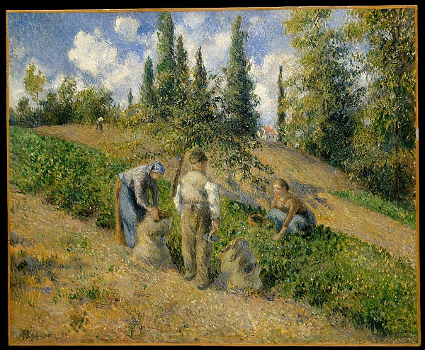 The Harvest, Pontoise (La Récolte, Pontoise), Camille Pissarro (French, Charlotte Amalie, Saint Thomas 1830–1903 Paris), Oil on canvas